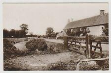 Somerset postcard - Middle Burnham - RP - P/U 1919