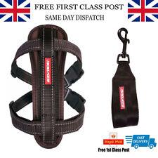 EzyDog Chest Plate Harness Reflective Inc Car Restraint Seat Belt Attachment XSM