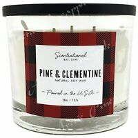 Scentsational 26oz Soy Blend Cotton 3 Wick Holiday Candle - Pine & Clementine