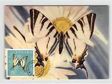 POLEN MK 1961 SCHMETTERLINGE BUTTERFLY MAXIMUMKARTE MAXIMUM CARD MC CM d9325