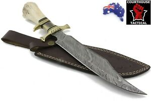Handmade Bowie Knife, Damascus Blade, Camel Bone & Brass Handle, Leather Sheath