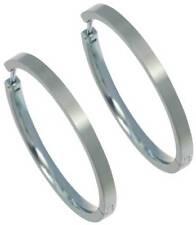 Titanium Hoop Fashion Earrings