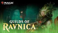 Guilds of Ravnica  MTG Uncommon set and common set  X4  Magic