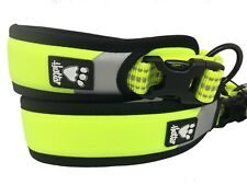Hurtta Dog Neon Yellow Padded Collar Dazzle Hivisability Night walking CLEARANCE