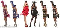 20er 30er Jahre Kleid Kostüm Flapper Charleston Charlestonkostüm Damen Fransen