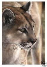 Tohon, Limited Edition Print, Mountain Lion, Cougar