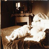 Neonato Vita Famille Amateur c1925 Stereo L33n Placca Da Lente Vintage Foto