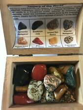 Jaspers of the World Collectors Chest 16 Tumblestones Kambamba Picture Orbicular
