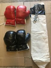 Boxing Gloves Two Pairs And Punching Bag