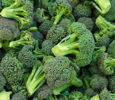 BROCCOLI SEEDS 500+ WALTHAM 29 garden VEGETABLES cooking CULINARY FREE SHIPPING