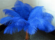 sapphire 10 pcs  Ostrich feathers 8-10 inches 20-25cm hot sales