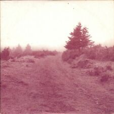 CD promo Jean-Louis MURAT Face nord (Bob DYLAN Leonard COHEN) Les inrockuptibles