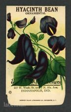 HYACINTH BEAN, Indianapolis, Everitt's Antique Seed Packet, Kitchen Decor, 206
