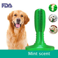 Pet Chew Toy Dog toothbrush Brushing Puppy Teething Brush for Doggy Pets Oral C