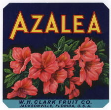 AZALEA FRUIT CRATE LABEL    VINTAGE  NEW  OLD   STOCK   ****RARE****
