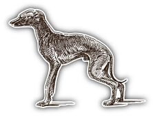 Italian Greyhound Dog Sketch Car Bumper Sticker Decal 5' x 4'