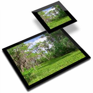Glass Placemat  & Coaster - Jean Lafitte National Park Louisiana Swamp  #45441