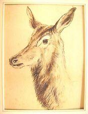 Les Animaux Tête de Cerf Couleur Craies c1850
