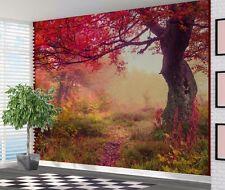 Beautiful colour saturated acacia tree autumn wallpaper wall mural (31677696)