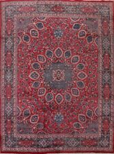 Vintage Traditional Floral Wool Area Rug Handmade Oriental Classic Carpet 10x12