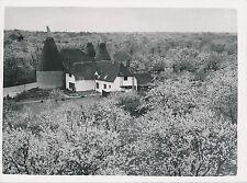ROYAUME-UNI c.1950 - Séchoirs à Houblon Vers Canterbury  Kent  - Div 7699
