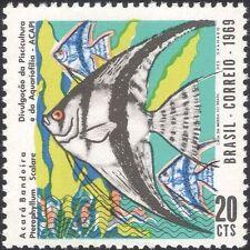 Brazil 1969 Angelfish/Fish/Marine/Animals/Wildlife/Conservation 1v (n25349)