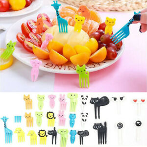 36Pcs Cute Animal Food Fruit Picks Forks Lunch Box Accessory Decor Kids Tools