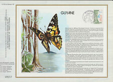 b feuillet CEF nature insecte papillon Guyane 973 Cayenne  1978