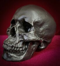 Black Skull - Anatomically Correct Size - Painted and Sealed - Skulls Realistic