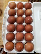 18 Black /blueCopper and wheaten Maran Hatching Eggs