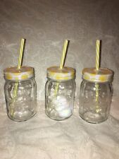 Lot of 3 The Pioneer Woman Drinking Mason Jars with Lids & Straws 16oz Made USA