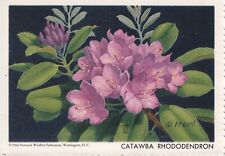 1960 National Wildlife Federation Conservation Stamp Catawba Rhododendron MNH