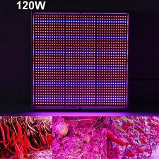 120W IR Full Spectrum 1365 LED Grow Light Panel Pour médical Usine Fleur Indoor
