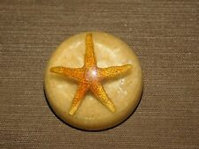 """VINTAGE OFFICE DESK 2"""" ACROSS STARFISH  PAPERWEIGHT"""