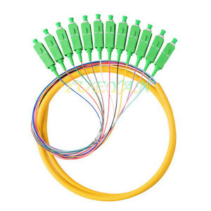 12 Strand 9/125 Fiber Optic Pigtails 1.5m SC/APC SingleMode Fiber Optic Pigtail