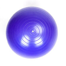 55cm 800g Gym/Household Explosion-proof Thicken Yoga Ball Smooth Surface Purple