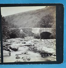 1870/80s Stereoview Photo Fingle Bridge On The Teign By W. Widger Torquay Devon