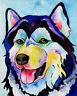 Blue Eyed HUSKY 8X10  DOG Colorful Print from Artist Sherry Shipley