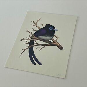 Mike Mitchell Japanese Paradise Flycatcher Fat Bird Kingdom SIGNED purple white