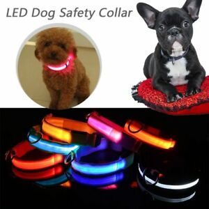 LED Dog Pet Collar Nylon USB Rechargable Flashing Luminous Safety Light Up