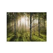 Los verdes árboles Lona Imagen-Nuevo Y Elegante Casa Ilustraciones H57, W77 D1.8 cm