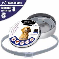 Dewel Adjustable Flea and Tick Collar for Small Medium Large Dog 8 Month