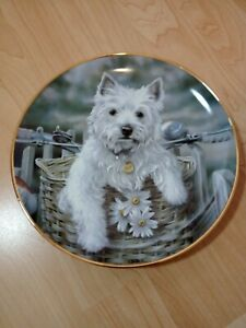DANBURY MINT Westies Plate 'Hitching a Ride' in excellent condition
