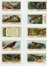 Full Set, Ogdens, British Birds 1905 VG (Gy859-314)