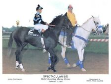 "1980 - SPECTACULAR BID - World's Leading Money Winner - 10"" x 8"""