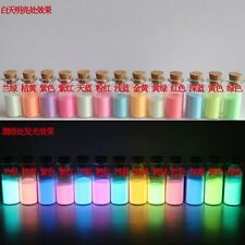 13Pcs Super Bright Glow-in-the-Dark Powder 10g Glow Pigment Strontium Aluminate