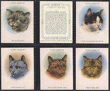 Full Set, Players, Cats (L) 1936