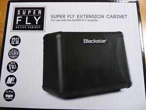 Blackstar Super Fly Amplifier Extension Cabinet.