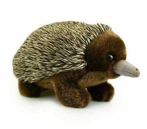 ~❤️~KORIMCO ECHIDNA 18cms Soft Toy Aust Native BNWT Plush~❤️~