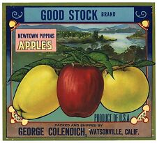 GOOD STOCK Brand, Vintage Watsonville **AN ORIGINAL FRUIT CRATE LABEL** wear 302